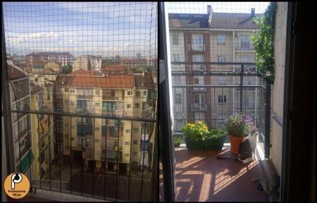Protezione balconi per gatti gatti norvegesi delle foreste - Protezioni per finestre ...